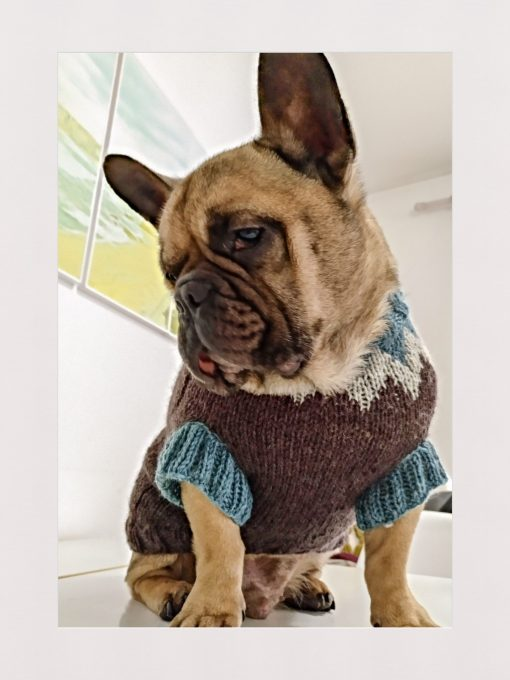 DogSweaterPicos by SocksandCo.